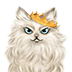 ペルシャ猫さんのイラスト